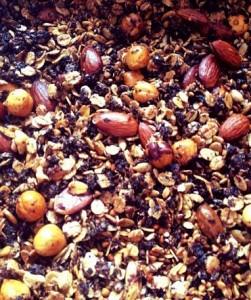 choco kokos granola 1